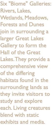 "Six ""Biome"" Galleries: Rivers, Lakes, Wetlands, Meadows, Forests and Dunes join in surrounding a larger Great Lakes Gallery to form the Hall of the Great Lakes. They provide a comprehensive view of the differing habitats found in the surrounding lands as they invite visitors to study and explore each. Living creatures blend with static exhibits and media."