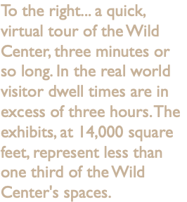 To the right... a quick, virtual tour of the Wild Center, three minutes or so long. In the real world visitor dwell times are in excess of three hours. The exhibits, at 14,000 square feet, represent less than one third of the Wild Center's spaces.
