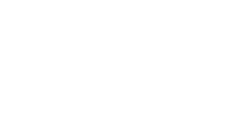 The second phase in the development of The Wild Center, Wild Walk adds a major outdoor exhibition and recreational component to the visitor experience. Its walkways, over eight hundred feet in length, rise from ground level to over forty feet in the air as they thread through the forest canopy, finally revealing an expansive view over the Adirondack Mountains. Ubertwig, Spider Web, the Snag and the Eagles Nest allow for exploration and discovery. Cable suspension bridges provide a bit of a thrill along the way. The genesis of the design was found in the form of the surrounding conifers. Exhibits, located on the several platforms, focus on the interpretation of life in the Adirondack woodlands. Wild Walk opened in July of 2015. Its impact has been remarkable!